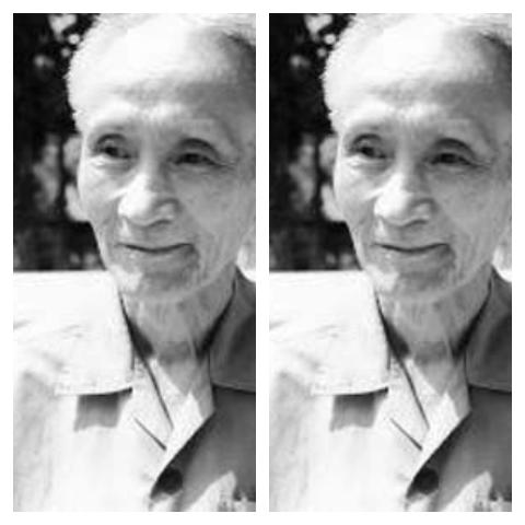 TLHLS ra đời gắn liền với tên tuổi của Bác sĩ Nguyễn Khắc Viện