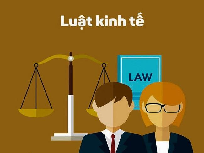 Bạn hiểu thế nào về ngành Luật Kinh tế