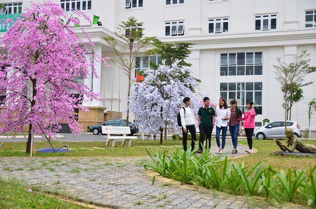 Cơ hội xét tuyển ngành quản trị nhân lực trường ĐH Đông Á