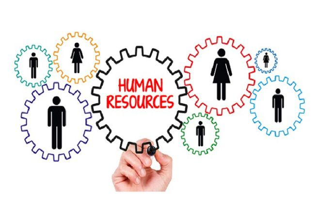 Review ngành quản trị nhân lực