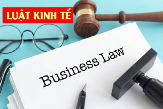 Sơ lược về ngành luật kinh tế