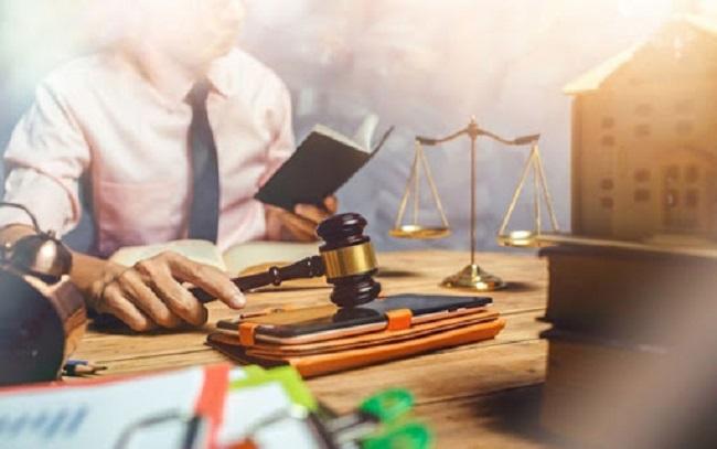 Thông tin về ngành luật kinh tế