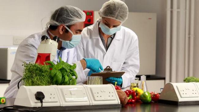 Vị trí việc làm ngành công nghệ thực phẩm