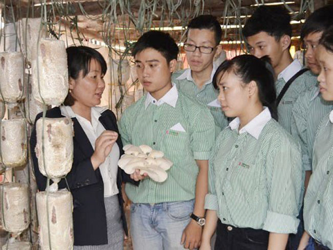 Chương trình đào tạo ngành nông nghiệp công nghệ cao