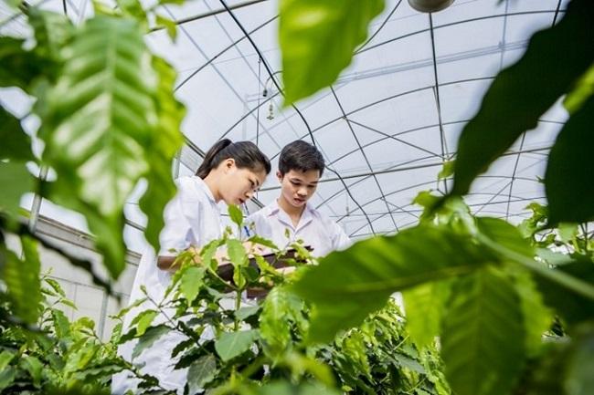 Chuyên ngành khoa học cây trồng