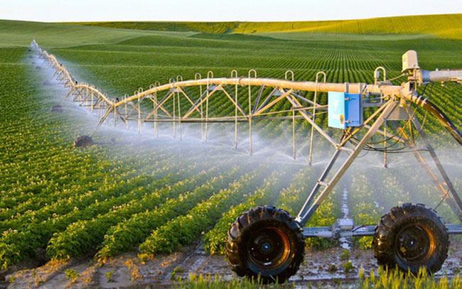 Ngành nông nghiệp công nghệ cao