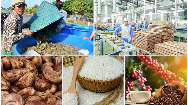 Tiêu chí về sản phẩm nông nghiệp công nghệ cao