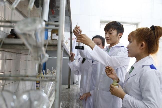 Việt Nam có thế mạnh để phát triển công nghệ chế biến lương thực, thực phẩm