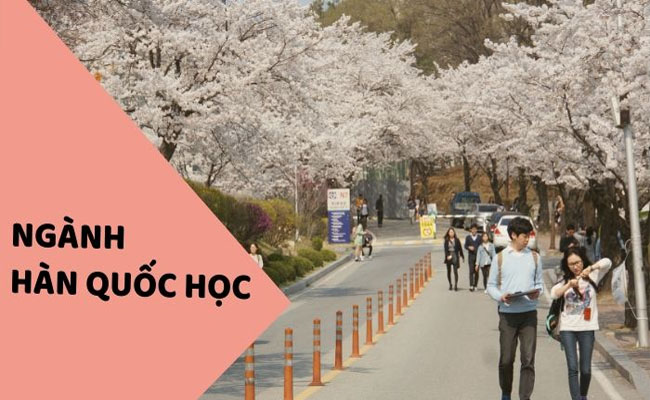 Các trường đào tạo ngành Hàn Quốc học và ngôn ngữ Hàn