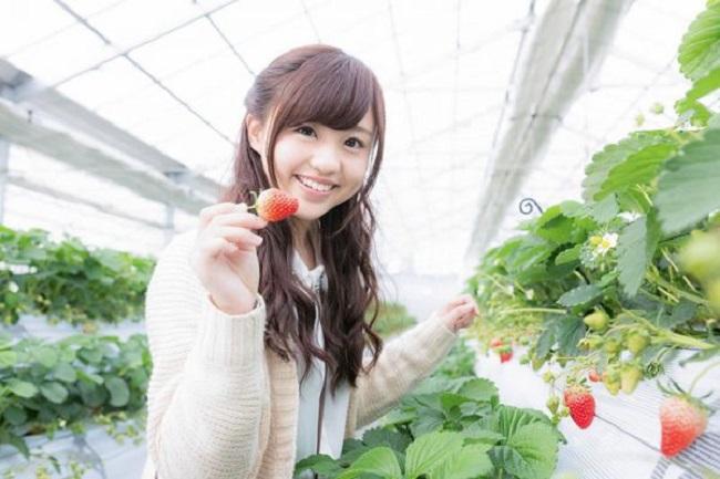 Khám phá cơ hội du học Nhật Bản ngành nông nghiệp tốt nhất