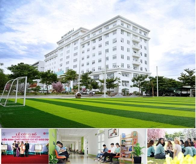 Cơ hội kinh doanh quốc tế tại Đại học Đông Á